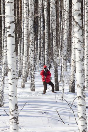 photographer in a bright red jacket takes winter landscape in a birch forest on a sunny day photo