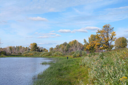 Scenic autumn landscape calm river yellow-green trees on the shore and white clouds on blue sky photo
