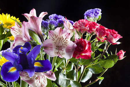 Macro beautiful colorful bouquet of flowers on a black background studio photo