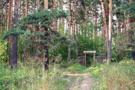 sacred source: wicker gate in Small Bor near Yelabuga in summer Stock Photo