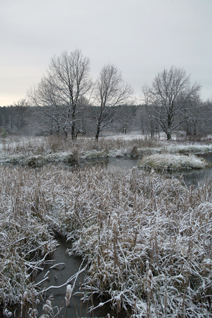 first day: winter landscape  the first snow in field near forest and river on a cloudy day Stock Photo