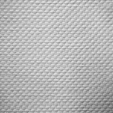macro textured paintable wallpaper printed with white paint photo