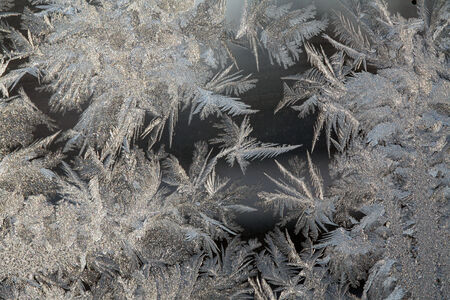 curlicue: macro texture curlicue hoarfrost on glass on a dark background