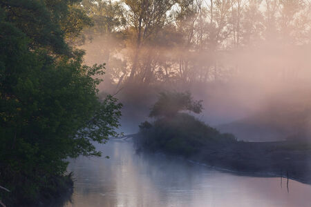 summer landscape of mist over the river in the early morning at sunrise and a trees  shore photo