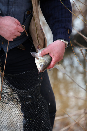 freshly caught bream in fishermans hand on the background of the river in the spring photo