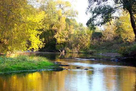 yellowing: autumn landscape mirror-like surface of the river and the yellowing trees on the shore on a sunny day