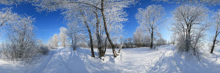 360 panorama, winter landscape trees in frost and snow drifts on the river on a bright sunny day Stock Photo