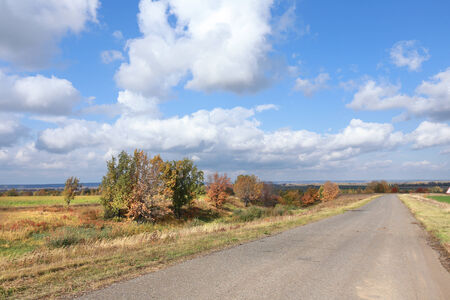 autumn landscape desert road to the horizon in the field and beautiful white clouds in sunny afternoon photo