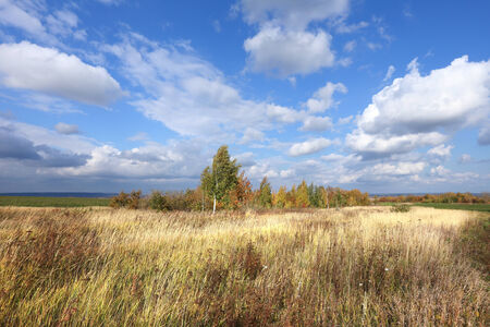 picturesque autumn landscape beautiful white clouds on blue sky over a field and trees with colorful leaves on a sunny day Stock Photo