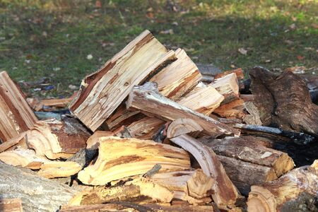 river bank: close-up of split logs in a pile on the river bank in autumn day