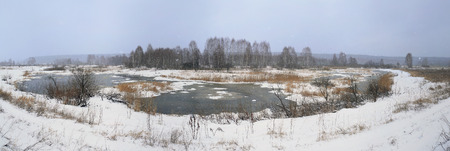 thawing: landscape spring thaw on the river near the forest in the early spring on a cloudy day