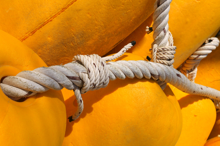 isolated close-up of yellow floats associated with white rope