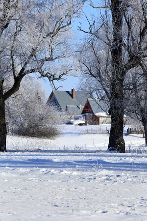 icy conditions: winter landscape frosty morning in the village, the frost on trees, fences and snow-covered road on a sunny day Stock Photo