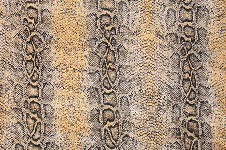 macro textuur van het weefsel onder de huid van een slang studio Stockfoto