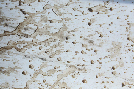 macro texture drops of mud on a white background photo