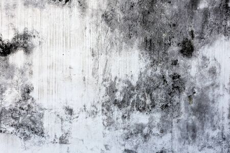 macro texture fragment of the old white-gray wall with mold photo