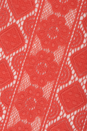 fragment: close-up fragment texture lace coral studio