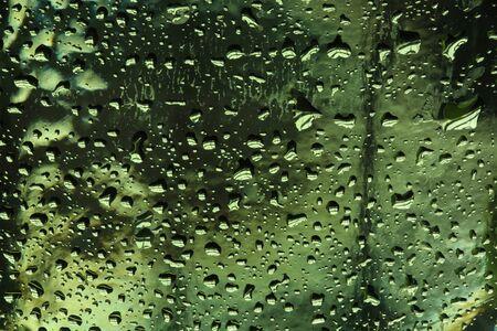 macro texture water drops on green glass studio photo