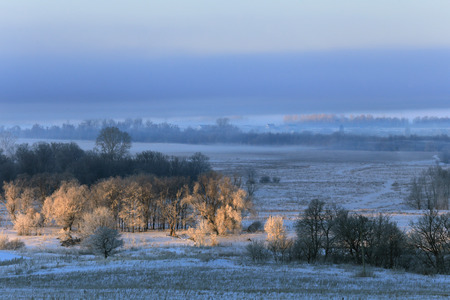 early fog: winter landscape dense fog over fields and trees in frost early in the morning at sunrise Stock Photo