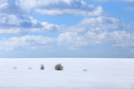 landscape marvelous white clouds in the blue sky above snow-covered field in early spring photo