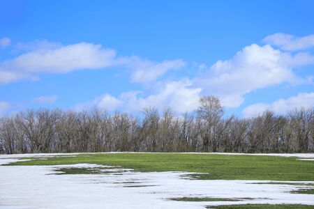 thawed: spring landscape snow melt in the field and white clouds on blue sky on a sunny day