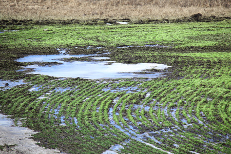 arable land: isolated arable land after the melting snow in early spring Stock Photo