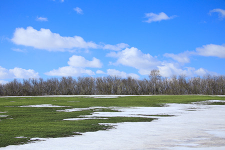 spring landscape snow melt in the field and white clouds on blue sky on a sunny day photo