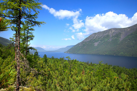 Summer landscape of Lake Frolikha in the Baikal mountains, pine forest and blue sky on a sunny day, top view photo