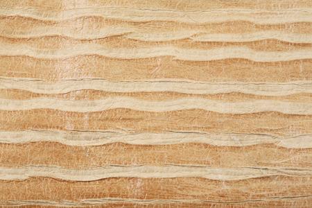 mottled skin: macro texture fragment wave pattern on the skin studio