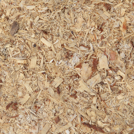 feedstock: macro isolated texture of a pile of sawdust in daylight Stock Photo