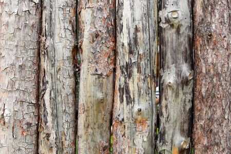 old fence: close-up texture fragment of a fence made of logs in natural light