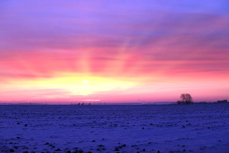 winter landscape stunning sunset in snow-covered field on the outskirts of the city