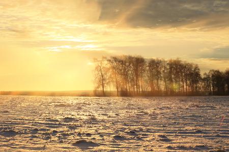 雪に覆われたフィールドの上の冬風景のカラフルな日の出