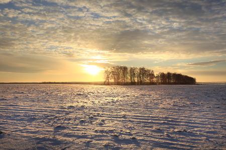 雪に覆われたフィールドの上の冬風景のカラフルな日の出 写真素材 - 71409239