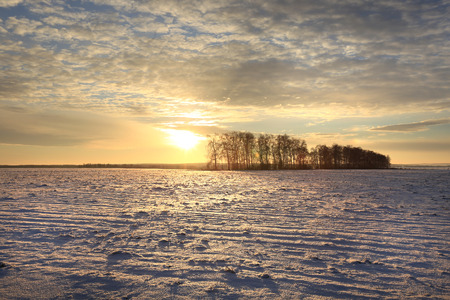 winter landscape colorful sunrise over the snow-covered field Фото со стока - 71409239