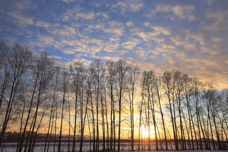 Winterlandschap kleurrijke zonsopgang boven de met sneeuw bedekte veld Stockfoto - 71409242