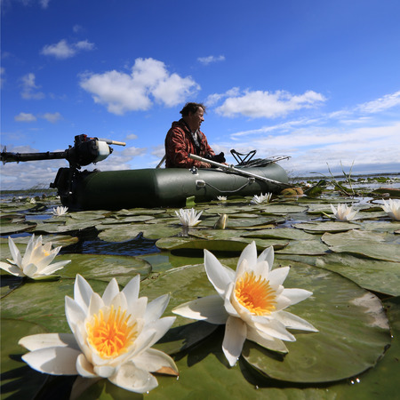 Summer landscape of a fisherman in a boat on the lake with white lilies Stockfoto - 97232596