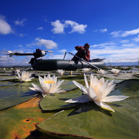 Summer landscape of a fisherman in a boat on the lake with white lilies Stockfoto - 97232600