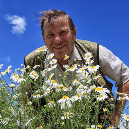 closeup portrait of a cheerful adult male in the chamomile field Stockfoto - 97231920