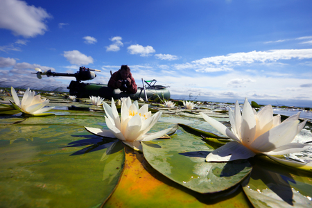 Summer landscape of a fisherman in a boat on the lake with white lilies Stockfoto - 97231954