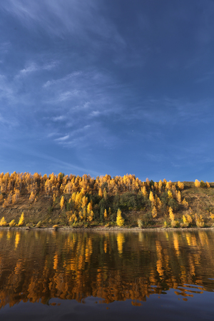 Panoramic landscape with river and autumn forest on the high Bank.