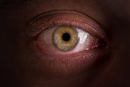 eye of the person macro photo