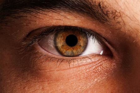美しい人間の目、瞳孔のクローズ アップ