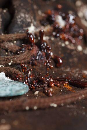 microcosm: microcosm: mold, fungi, spores, which grew in the damp