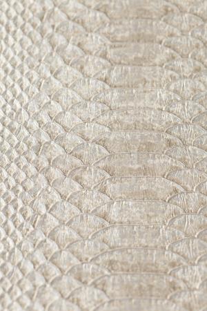 leather texture ,snake skin texture Stok Fotoğraf - 58741655