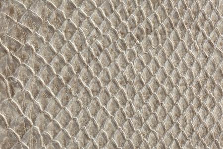 leather texture ,snake skin texture Stok Fotoğraf - 58741746