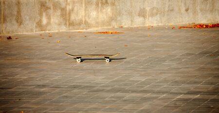 A skateboard stands alone on a stone block in a skatepark in the autumn sunset sunlight Foto de archivo
