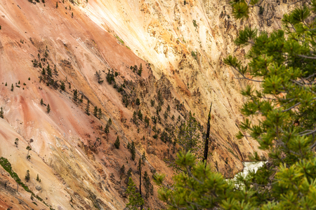Grand Canyon of Yellowstone National Park, Landscape Photography