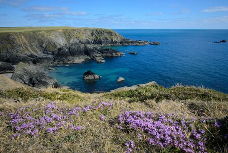 national scenic trail: Atlantic coast in Pembrokeshire Coast National Park, UK