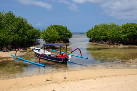 mangroves: Boat near coral reef and mangroves on Nusa Lembongan, Indonesia